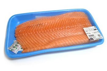 salmonfilet01.jpg